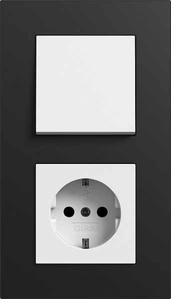 Combinatie intrerupator si priza_Esprit Linoleum Multiplex_Negru-Alb lucios